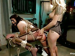 Coral aorta is a breasty brunette hair milf who enjoys being aroused while she is bound up in bondage devices. She likes having her mouth gagged with a ball as her beautiful domina takes advantage of her position. The hot blonde milf Lorelei Lee likes satisfying her sex slave with a transparent butt plug.