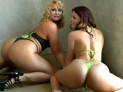 two slutty women bending for the purpose of a fresh photoshoot